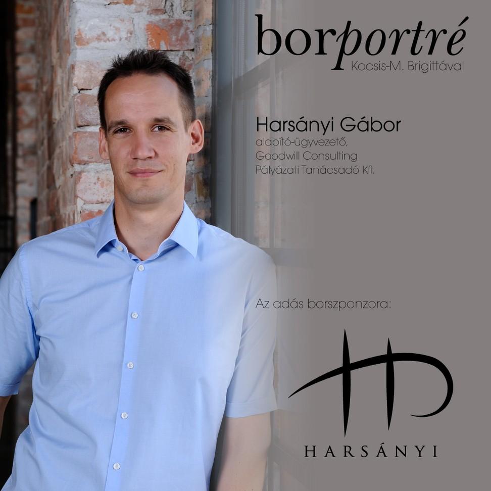 borportre_2020_05_15_harsanyi_gabor_palyazatiro_harsanyi_kocka