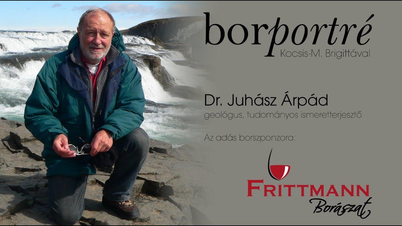 Dr. Juhász Árpád, geológus   BorPortré 2020-05-22