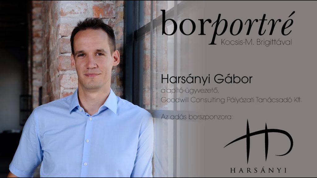 Harsányi Gábor, Goodwill Consulting   BorPortré 2020-05-15