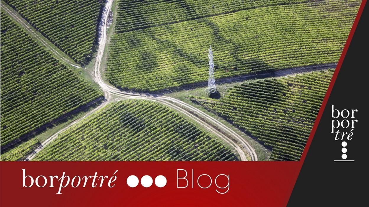 Irány Villány! – Blog | BorPortré