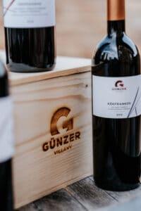 Gunzer_pinceszet_3
