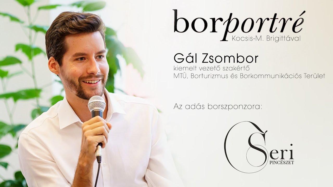 Gál Zsombor, borturizmus és borkommunikáció | BorPortré 2021-01-27