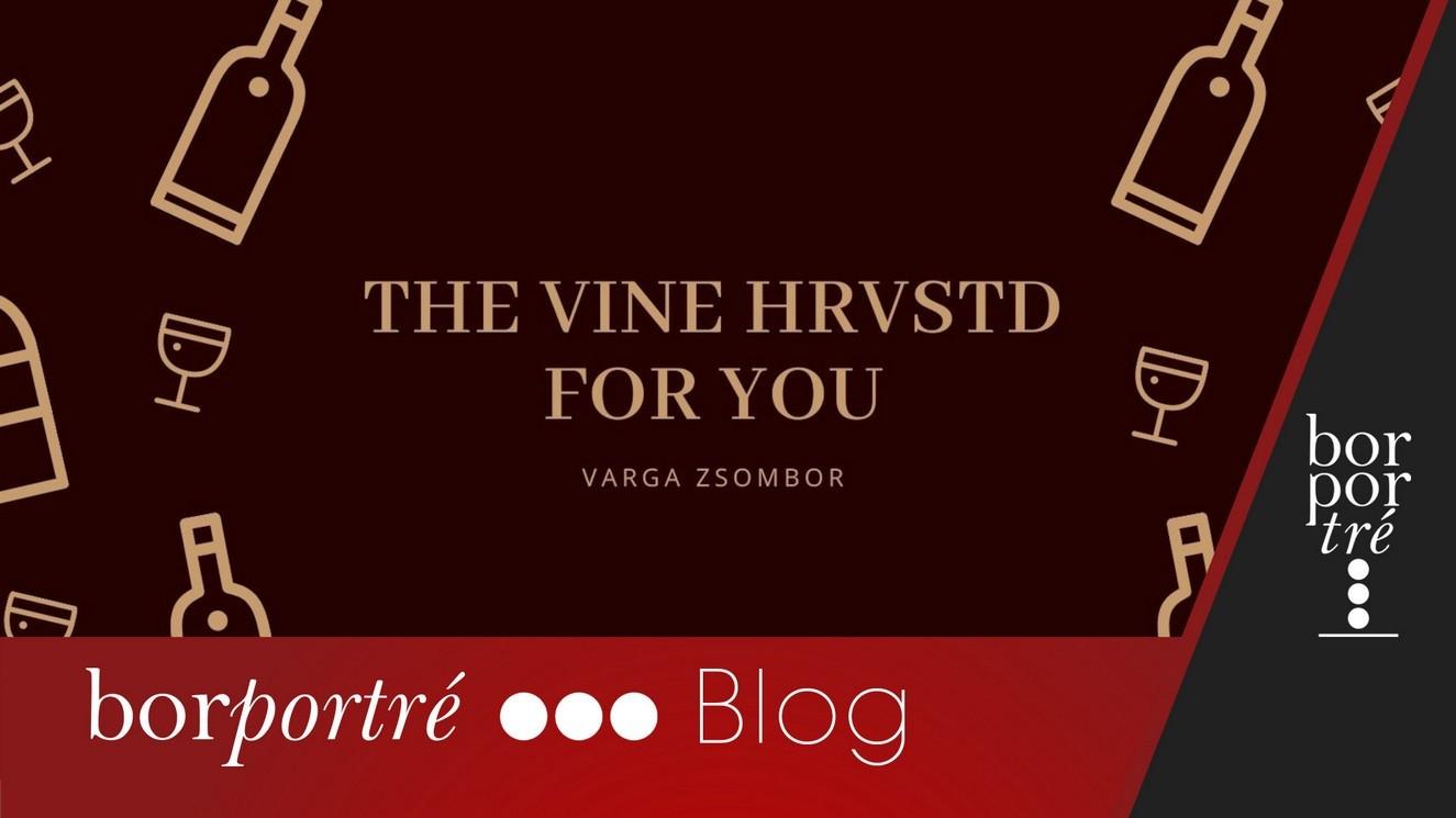 The_Vine_borito